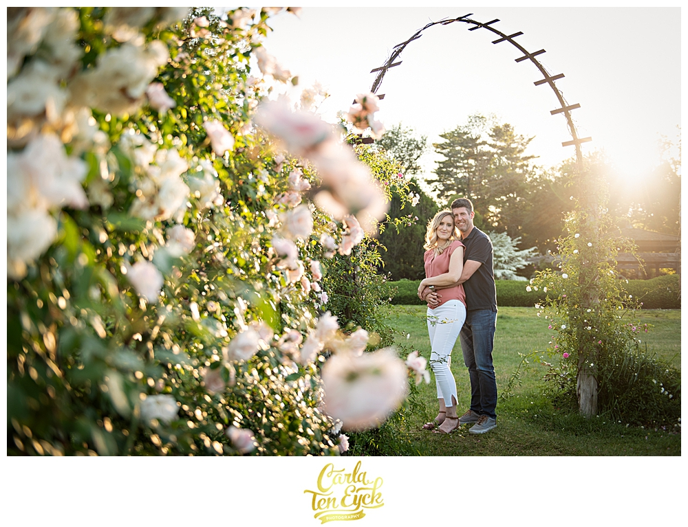 Couples snuggles at sunset during their engagement session in the rose garden in Elizabeth Park Hartford CT